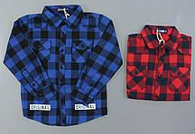 Рубашка для мальчиков Setty Koop, 6-16 лет. {есть:6 лет}