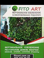 Вертикальное озеленение помещений для дома, офиса, ресторана