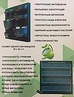 Фитомодули для озеленения из живых цветов c встроенной системой полива