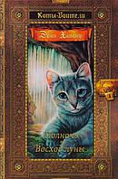Коты-воители. Золотая коллекция. 4 Том. Полночь. Восход луны. Хантер Э. Абрис Олма