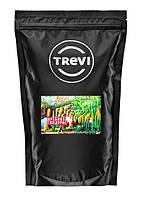 Кофе в зёрнах Trevi Арабика Гондурас 1 кг