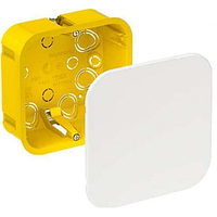Распределительная коробка для полых стен 100x100x50 мм (IMT35161)