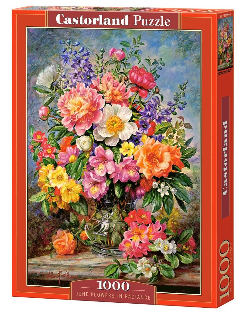 Пазл Castorland June Flowers in Radiance, 1000 эл.