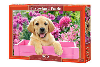 Пазл Castorland Labrador Puppy in Pink Box, 500 эл.