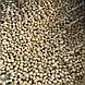 Оборудование для производства корма для домашних животных, фото 6
