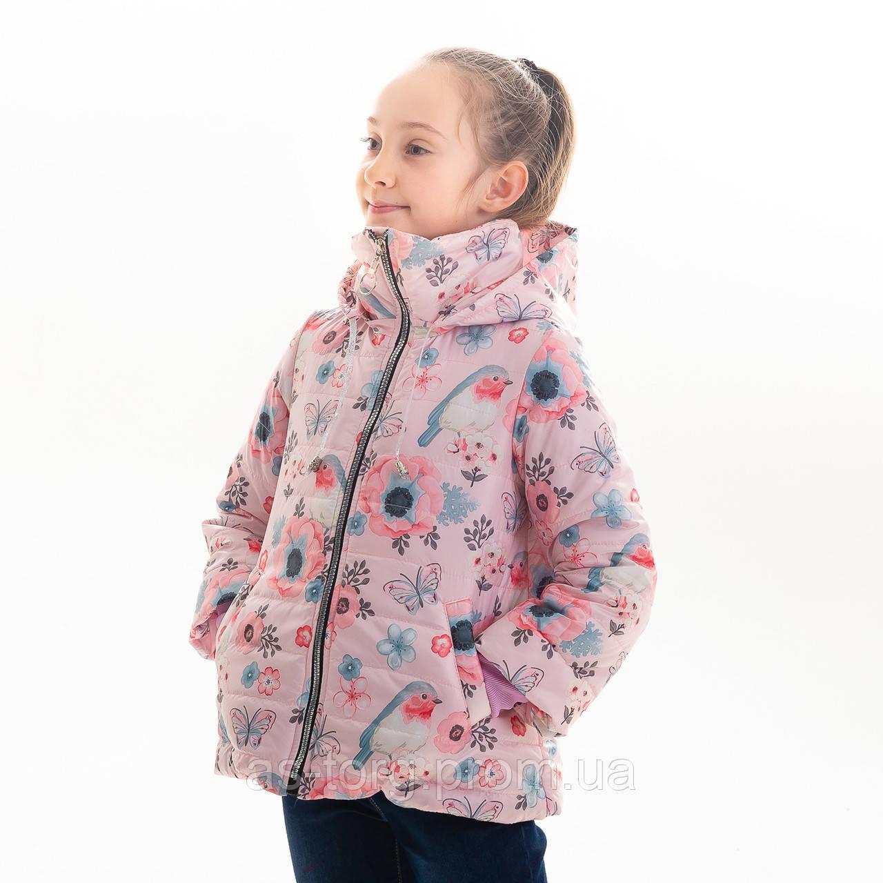 Куртка демисезонная для девочки «Миде» 32,34