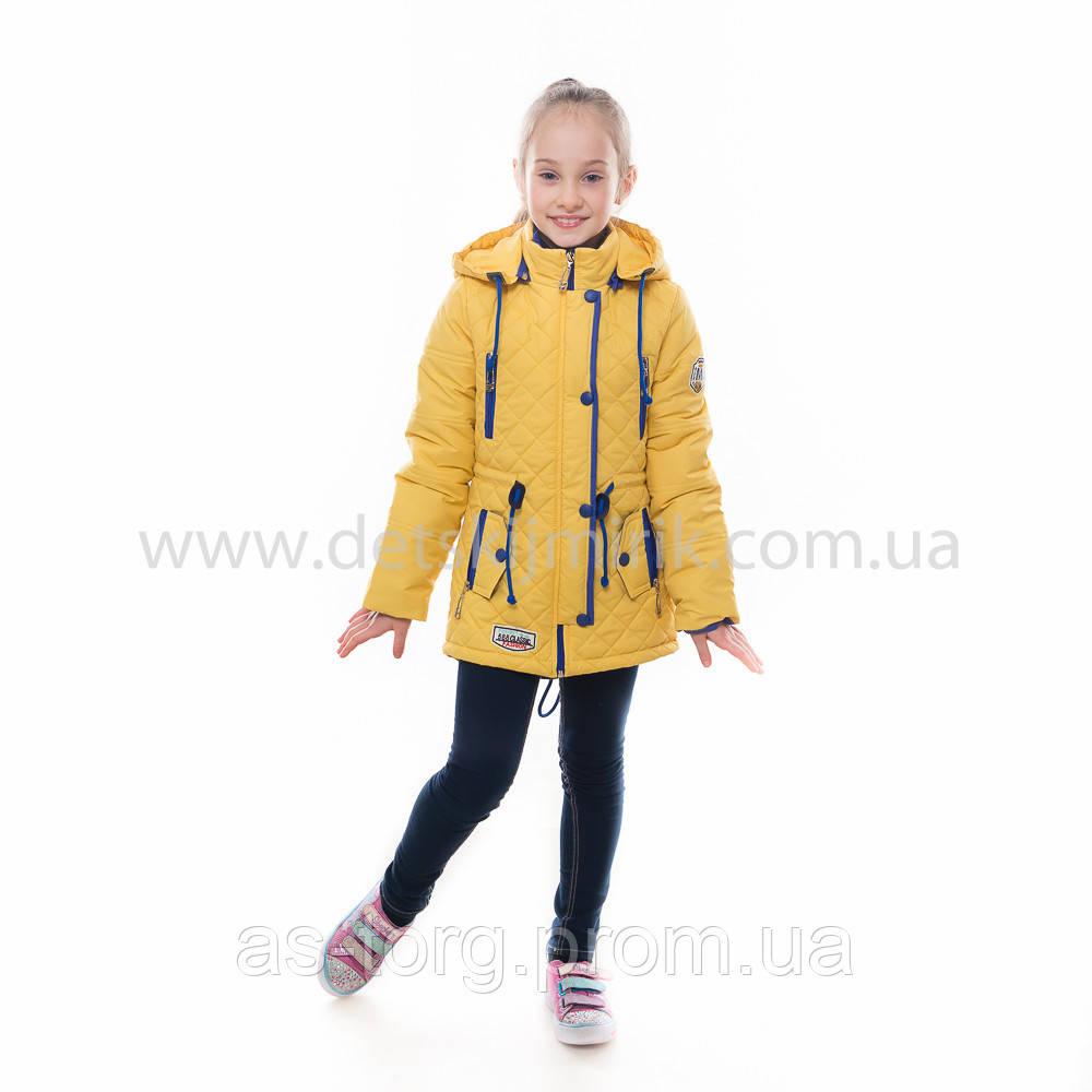 """Детская  куртка  демисезонная для девочки """"Жаклин"""" с капюшоном32,32,34,36"""