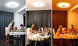 Функціональний світильник LED Maxus Intelite (60W 2700-6500K) 007, фото 3