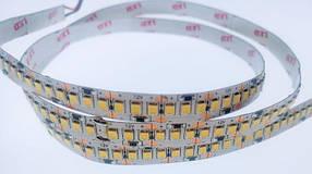 Светодиодная лента Premium SMD 2835/204 12V 6000-8000К IP20 (1м)  на усиленной подложке Код.59612