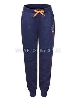 Мужские спортивные брюки на флисе Glo-Story, фото 2