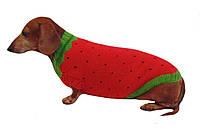 Свитер Клубничка для собаки,свитер для таксы,свитер для собаки,теплая одежда для собаки