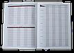 Щоденник шкільний PRINCESS, А5, 40арк, м'яка обкл., скоба, УФ-лак, SMART Line, фото 7