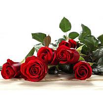 Стіл кухонний скляний Прямокутний з полицею Red Roses 91х61 *Еко (БЦ-стіл ТМ), фото 3