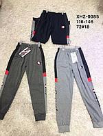 Трикотажные спортивные брюки для мальчиков Active Sports 116-146 р.р.