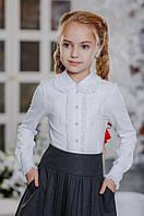 Школьные блузы с длинным рукавом, регланы, водолазки