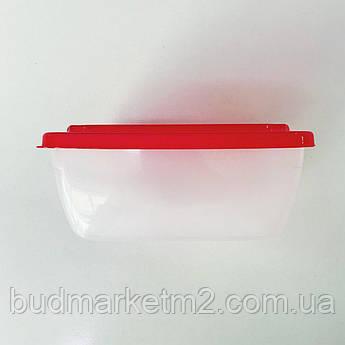 Контейнер прямоугольный пищевой 0,6 л цветная крышка