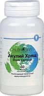 Акулий Хрящ США Арго (укрепление иммунитета, онкология, противоопухолевое, перелом, артрит, аллергия, мастит)