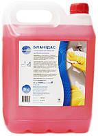 Бланидас - сильнодействующее моющее средство для унитазов, 5 л