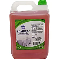 Бланидас - cредство универсальное для санитарных комнат, 5 л