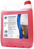 Бланидас - моющее средство для ген.уборки санитарных комнат, 5 л