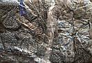 Мужские хлопковые трусы полуботалы тм Семейные р 50-58, фото 2