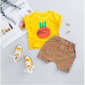 Летний костюм на мальчика  футбока +шорты  1-3 года Морковка желтый