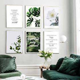Постеры Растения