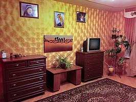 """Дизайн-обогреватель """"Неразлучники"""" - дополнительное отопление комнаты в квартире г. Ивано-Франковск"""