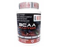 DL Nutrition BCAA Factor 500 g 50 serv.Аминокислоты