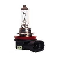 Лампочки для світлових приладів автомобіля