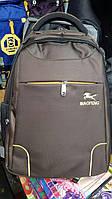 Рюкзак для ноутбука BIAOFENG на диагональ 15,6 дюймов