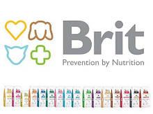 Brit Care (Чехия)