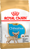 Royal Canin Chihuahua Junior (Роял Канин) - сухой корм для щенков породы Чихуахуа 1,5 кг