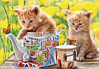 Пазлы Время чаепития, котята на 500 элементов
