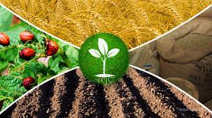 Средства защиты растений в крупной фасовке