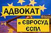 Адвокат у справах в ЄВРОПЕЙСЬКОМУ СУДІ З ПРАВ ЛЮДИНИ