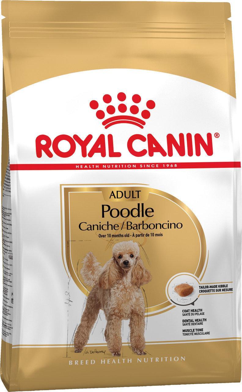 Royal Canin Poodle Adult (Роял Канін) сухий корм для дорослих собак породи Пудель 0,5 кг