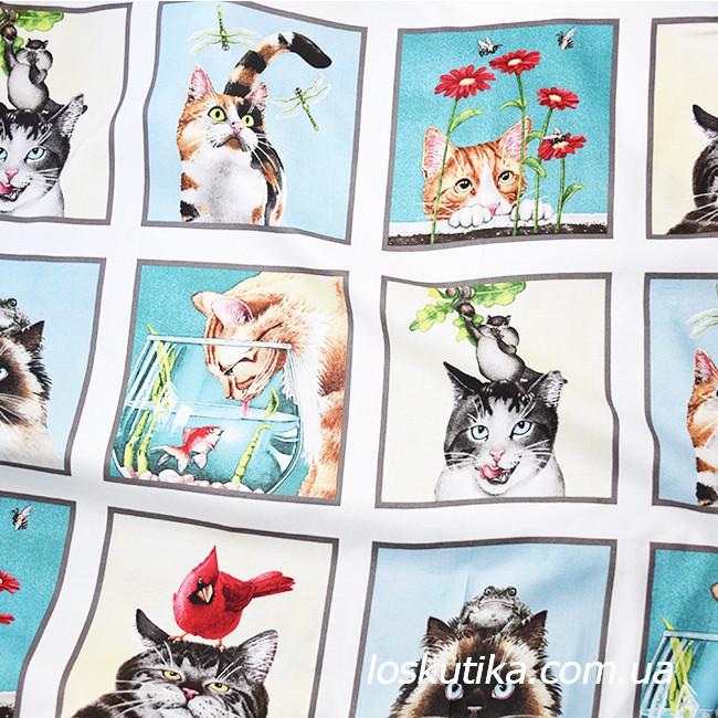 52014 Беззаботные кошечки . Ткань с изображением зверей. Натуральные ткани с рисунком.