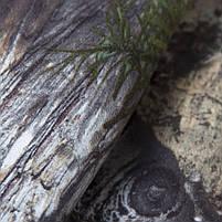 """Костюм StormWall PRO """"Sequoia"""", фото 8"""