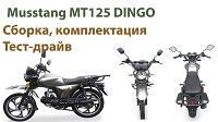 Новое видео на нашем Musstang МТ125 DINGO сборка, распаковка, тест драйв