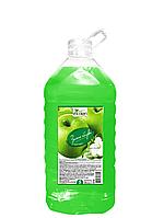 Рідке мило Selan EcoLan Зелене яблуко 5000 мл
