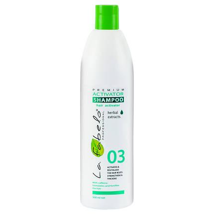 Шампунь La Fabelo Premium 03 Activator активатор роста волос 500мл, фото 2