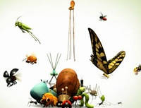 Кормовые насекомые, корма для рептилий