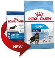 Корм для щенков до 15 месяцев Royal Canin MAXI JUNIOR 15кг