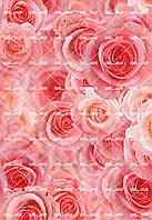 """Съедобная сахарная/вафельная пищевая печать лист А4 """"Текстура/Фон Цветы Розовые Розы"""""""
