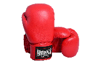 Боксерские перчатки PowerPlay 3004 Красные  10 oz 12 oz 14 oz 16 oz 18 oz, фото 1