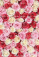 """Съедобная сахарная/вафельная пищевая печать лист А4 """"Текстура/Фон Разноцветные Розы"""""""