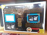 "Мозаика из пайеток ""Лебеди"", Пм-01-04, фото 2"