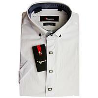 Подростковая рубашка для мальчика SigMen с коротким рукавом приталенная белая