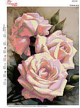 Вышивка бисером Ніжна троянда  №101